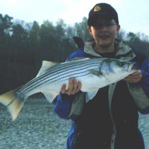 Lake allatoona fishing guides service stripers striped for Lake allatoona fishing guide